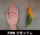 TIPA_日常コラム